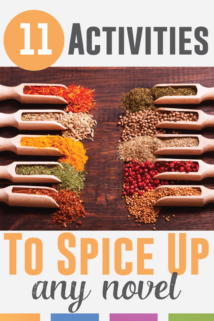 Looking to spice up your novel lesson plans? Add spice to any piece of literature with one of these eleven literature activities.